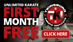 Twinsburg Karate Institute